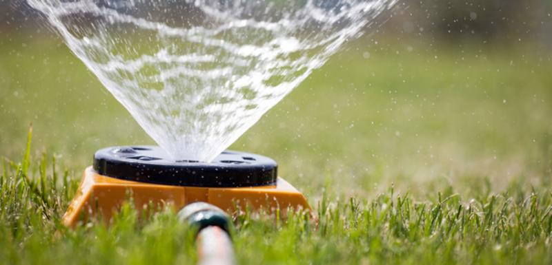 Best Watering Practices For Your Lawn